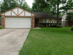 Photo of 3219 River Valley Drive, Houston, TX 77339 (MLS # 25103065)