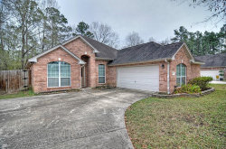 Photo of 461 Cumberland Trail, Conroe, TX 77302 (MLS # 27866546)