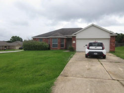 Photo of 13317 Miller Lane, Willis, TX 77318 (MLS # 28768962)
