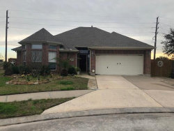 Photo of 12023 Brantley Haven Drive, Tomball, TX 77375 (MLS # 32483978)