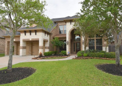 Photo of 4535 Red Yucca Drive, Katy, TX 77494 (MLS # 32831551)