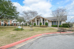 Photo of 40 Chapparal Court, Missouri City, TX 77459 (MLS # 33587891)