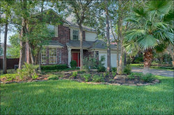 Photo of 14 Stony End Place, The Woodlands, TX 77381 (MLS # 38951736)