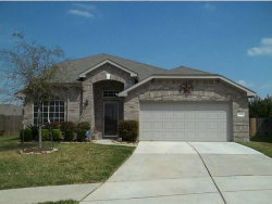 Photo of 11902 Perdenales Falls Court, Tomball, TX 77375 (MLS # 45902585)