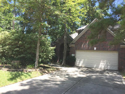 Photo of 177 S Hollylaurel Circle, The Woodlands, TX 77382 (MLS # 46975119)