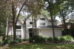 Photo of 54 Edgemire Place, The Woodlands, TX 77381 (MLS # 47475287)