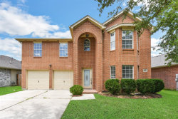 Photo of 313 Mammoth Springs, Dickinson, TX 77539 (MLS # 57830959)