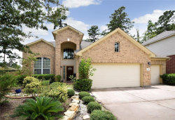 Photo of 19 W Spindle Tree Circle, The Woodlands, TX 77382 (MLS # 58967898)