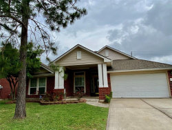 Photo of 10323 Stan Brook Drive, Houston, TX 77089 (MLS # 62261038)