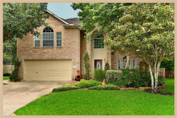 Photo of 19 Snow Woods Court, The Woodlands, TX 77385 (MLS # 65784813)