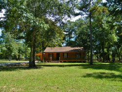Photo of 12111 Old County Road, Willis, TX 77378 (MLS # 69353352)