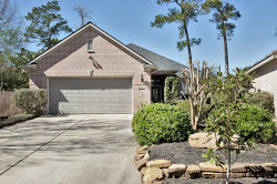 Photo of 38 Eagle Mead Place, The Woodlands, TX 77382 (MLS # 72335914)