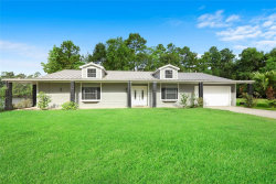 Photo of 17720 Black Bass Drive, Conroe, TX 77384 (MLS # 75889591)