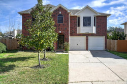 Photo of 10818 Belle Haven Drive, Houston, TX 77065 (MLS # 81134041)