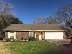 Photo of 59 Blackgum Court, Lake Jackson, TX 77566 (MLS # 85381311)