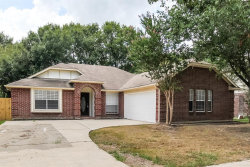 Photo of 19103 Forest Trace Drive, Humble, TX 77346 (MLS # 85421303)