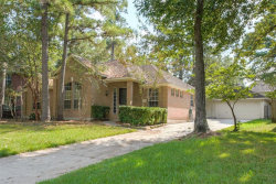 Photo of 19 Long Springs Place, The Woodlands, TX 77382 (MLS # 87186741)