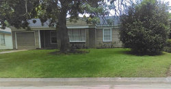 Photo of 802 Horncastle Street, Channelview, TX 77530 (MLS # 90946006)