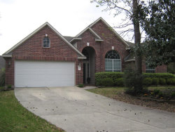 Photo of 15 Climbing Rose Court, The Woodlands, TX 77385 (MLS # 93332031)