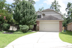 Photo of 3 E Sage Creek Place, The Woodlands, TX 77382 (MLS # 94492112)
