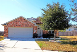 Photo of 20007 Mammoth Falls Drive, Tomball, TX 77375 (MLS # 95432580)