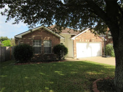 Photo of 4023 Eagle Bluff Court, Houston, TX 77082 (MLS # 10668186)