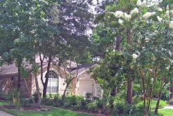 Photo of 11 Pocket Flower Court, The Woodlands, TX 77382 (MLS # 10718728)