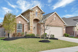 Photo of 13010 Thorn Valley Court, Tomball, TX 77377 (MLS # 14338467)