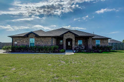 Photo of 11311 Audrey Drive, Needville, TX 77461 (MLS # 16366880)
