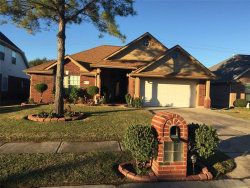 Photo of 11007 Graywood Court Court, La Porte, TX 77571 (MLS # 16579039)