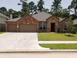 Photo of 14541 Diamond Park Lane, Conroe, TX 77384 (MLS # 17728818)
