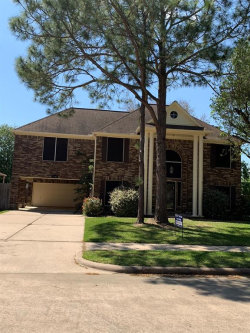 Photo of 1714 Karankawas Court, Deer Park, TX 77536 (MLS # 18615285)