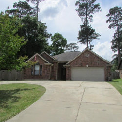 Photo of 3135 Canterbury Lane, Montgomery, TX 77356 (MLS # 19148058)