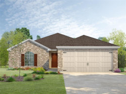 Photo of 217 N Amherst Drive, West Columbia, TX 77486 (MLS # 19531946)