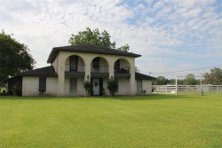 Photo of 4587 County Road 803, Brazoria, TX 77422 (MLS # 23558197)
