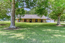Photo of 10710 Hunters Chase Road, Needville, TX 77461 (MLS # 28181286)
