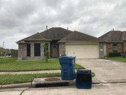 Photo of 4007 Blueberry Court, Dickinson, TX 77539 (MLS # 28554976)