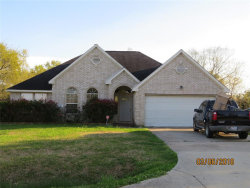 Photo of 411 Oakdale Street, La Porte, TX 77571 (MLS # 28558127)