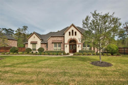 Photo of 13223 Sonali Springs Drive, Conroe, TX 77302 (MLS # 29976544)