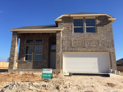 Photo of 5 Salado Vista Ct, The Woodlands, TX 77354 (MLS # 30295593)