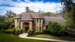 Photo of 201 Cherrywood Drive, Lake Jackson, TX 77566 (MLS # 31880075)