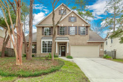 Photo of 10 Fortuneberry Place, The Woodlands, TX 77382 (MLS # 35332352)