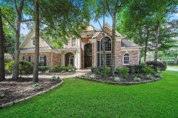 Photo of 66 N Royal Fern Drive, The Woodlands, TX 77380 (MLS # 37658607)