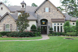 Photo of 14 W Bridle Oak Court, The Woodlands, TX 77380 (MLS # 38826984)