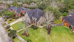 Photo of 4306 Orange Jasmine Court, Houston, TX 77059 (MLS # 38834091)