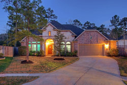 Photo of 207 Spring Creek Court, Pinehurst, TX 77362 (MLS # 41094969)