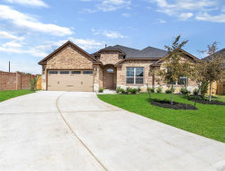 Photo of 523 Yellow Bullhead Court, Rosenberg, TX 77469 (MLS # 41351062)