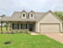 Photo of 2333 Shalmar Drive, West Columbia, TX 77486 (MLS # 42564186)