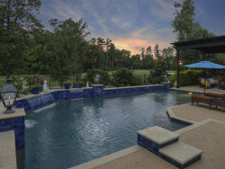 Photo of 35 Player Vista Place, The Woodlands, TX 77382 (MLS # 4275639)