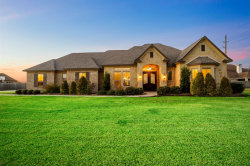 Photo of 3826 Founders Drive, Needville, TX 77461 (MLS # 44012504)